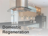 Domestic Regeneration